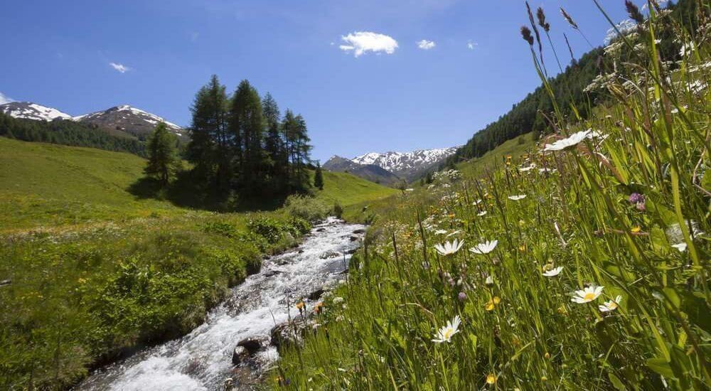 Waalhof Coldrano - Alto Adige 34