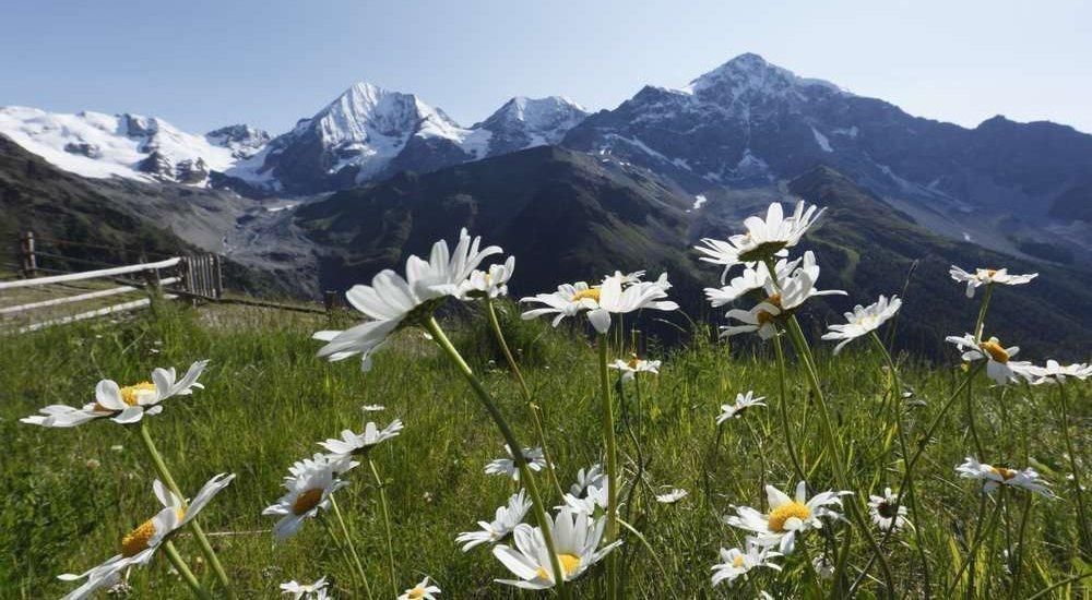 Waalhof Coldrano - Alto Adige 41