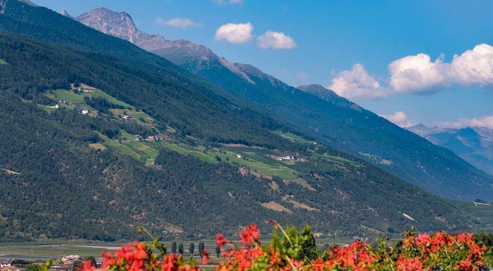 Waalhof Coldrano - Alto Adige 9